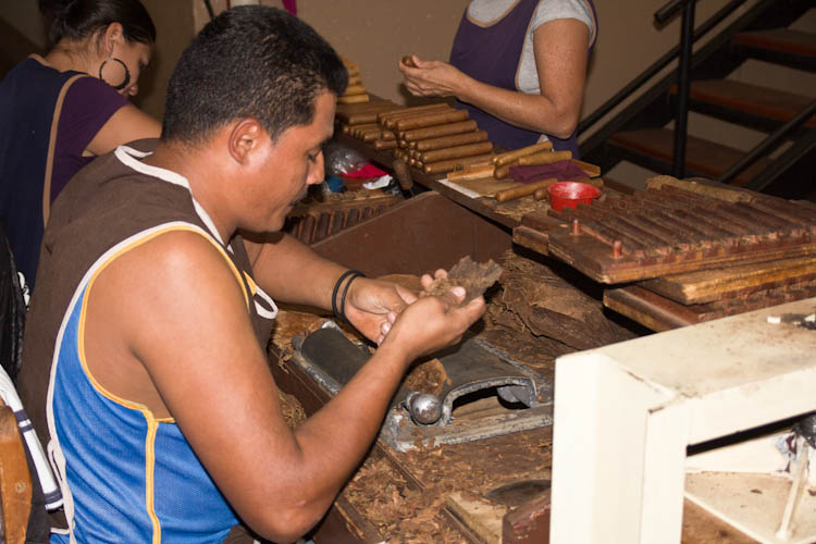Rolling the cigars ...